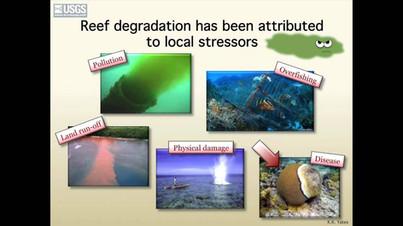 OA & FL/Caribean Coral Reefs