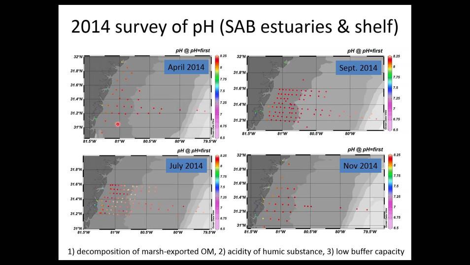 Estuarine Acidification in the SAB