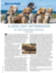 Abilites magazine Article 2.jpg