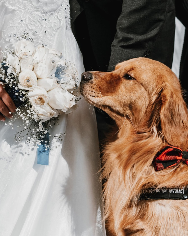 Rollo at wedding.jpg
