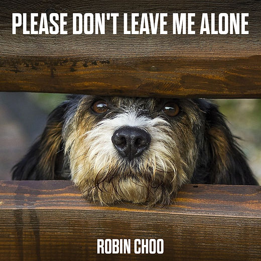 Please Don't Leave Me Alone Cover Art