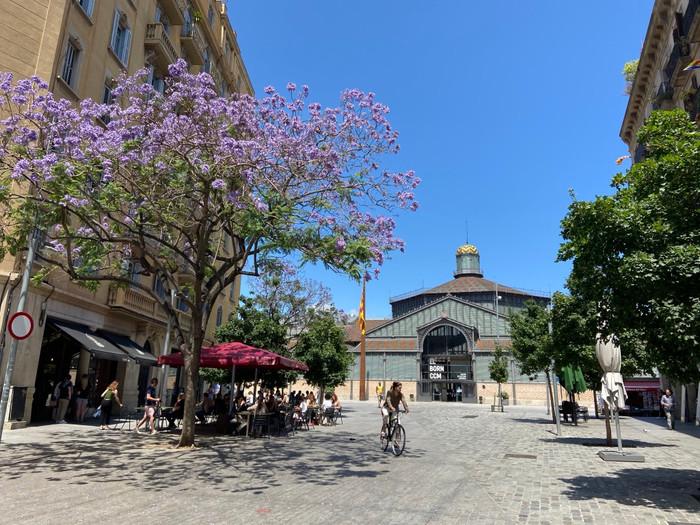Barcelona Week 1