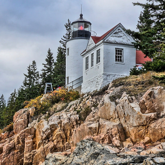 Acadia Lite