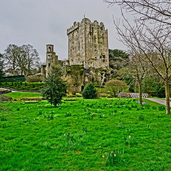 Blarney Castle (made to order)