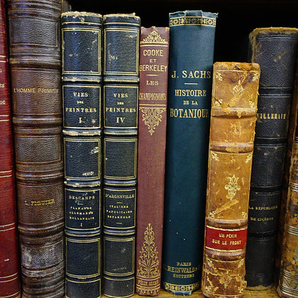 Old Books (made to order)