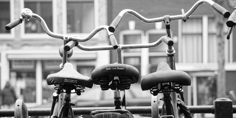 Amsterdam Bikes (made to order)