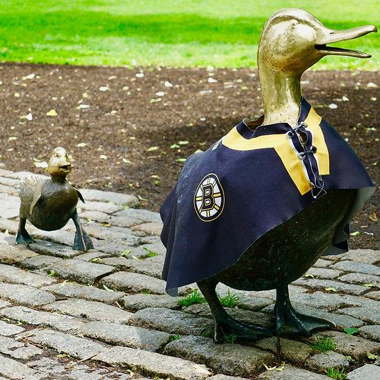 Ducks in Uniform