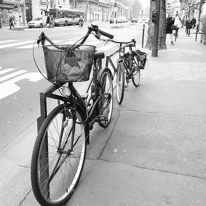 Parisian Bikes (made to order)