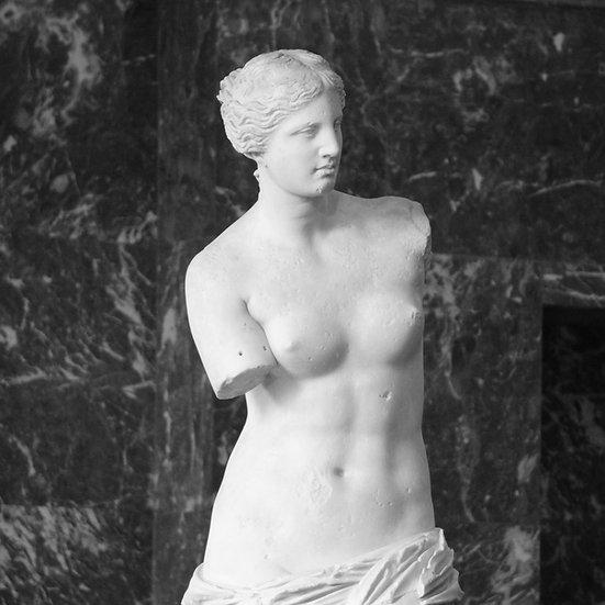 Venus de Milos (made to order)
