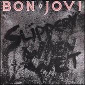 BonJovi-SlipperyWet86.jpg