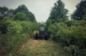 Arens Land Clearing Brush hog