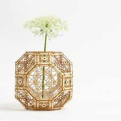 rhombiflower.jpg