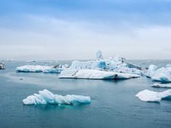 Sustainable Economy & Climate Change
