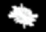 Wonderlights Logo - No Band - Md-01.png