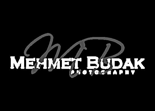 MEHMET-BUDAK-PSD.png