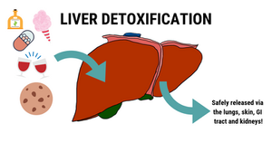 how to detox your liver naturally - detox program autumn elle nutrition review