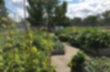 garden 2019 2.jpg