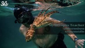 My Octopus Teacher : บทเรียนจากหมึกสาย ความหมายแห่งชีวิต