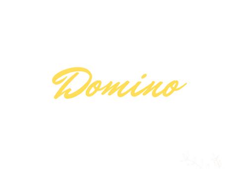 Meet  Domino