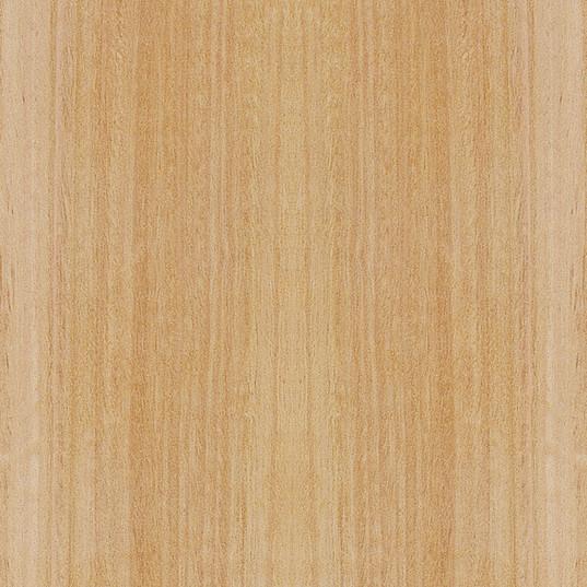 eukalyptus.jpg