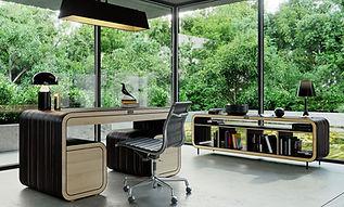 ZendU furniture - ebony line.jpg