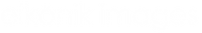 eikonik logo text white.png