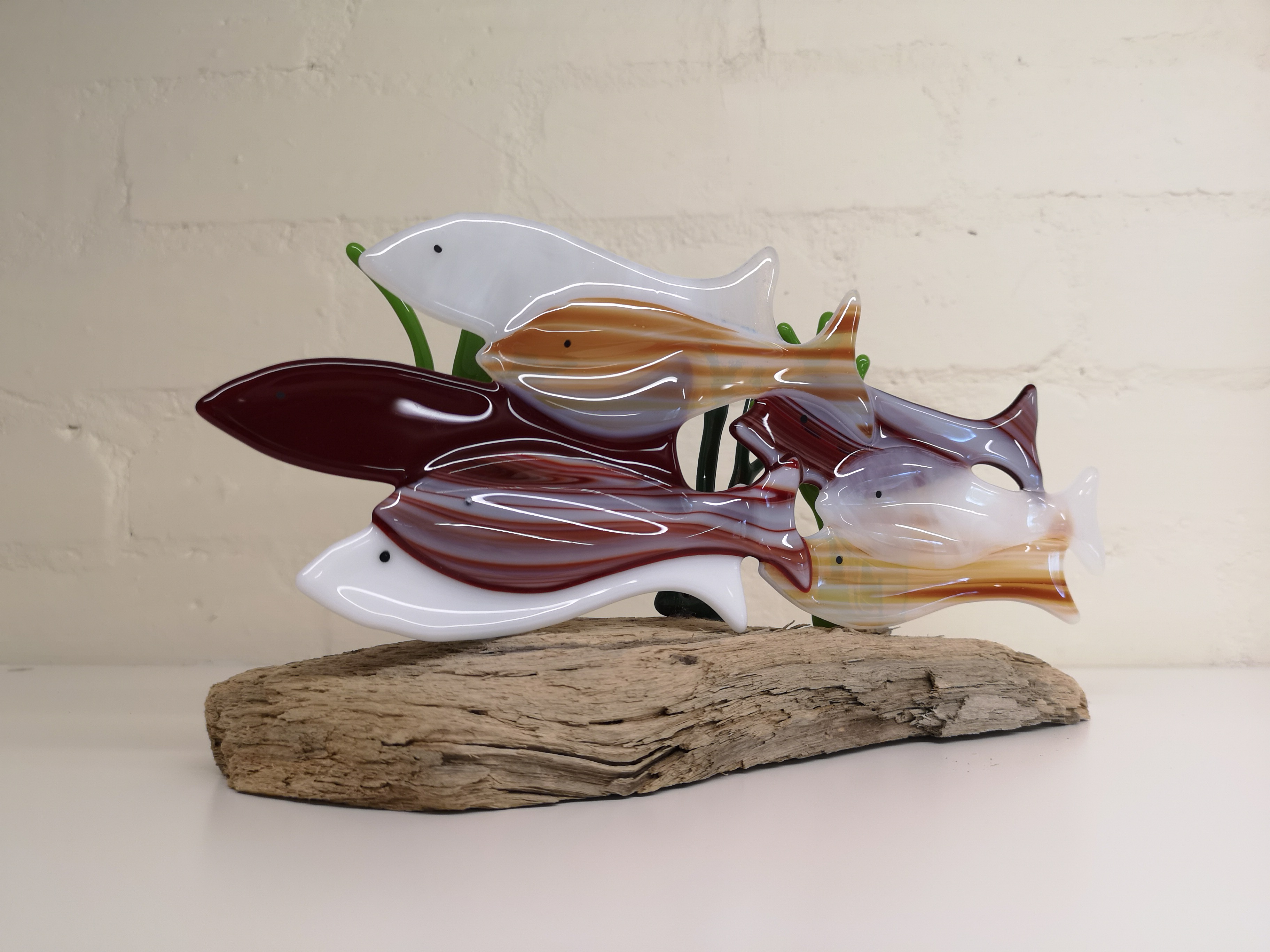 Shoal of fish on driftwood (30cm across)
