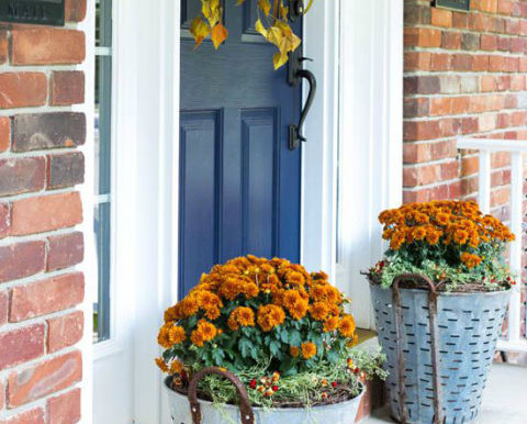 5 Fall Curb Appeal Ideas For Selling Your Home