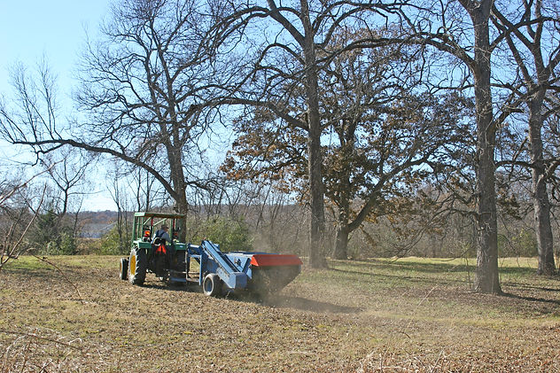 Bryant Farms Harvesting pecans in the fall at Bryant Farms.