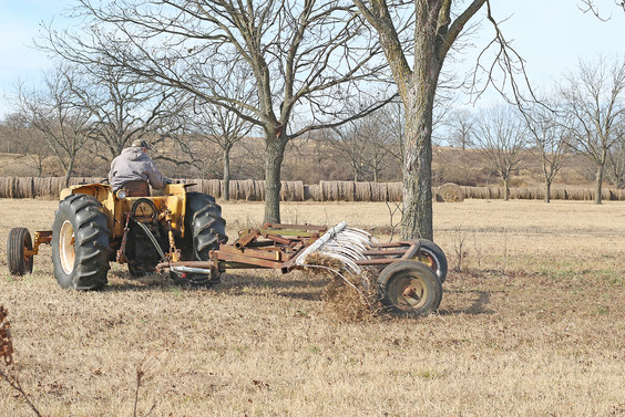 Bryant Pecan Harvest 2019 IMG_1850 sm.jp