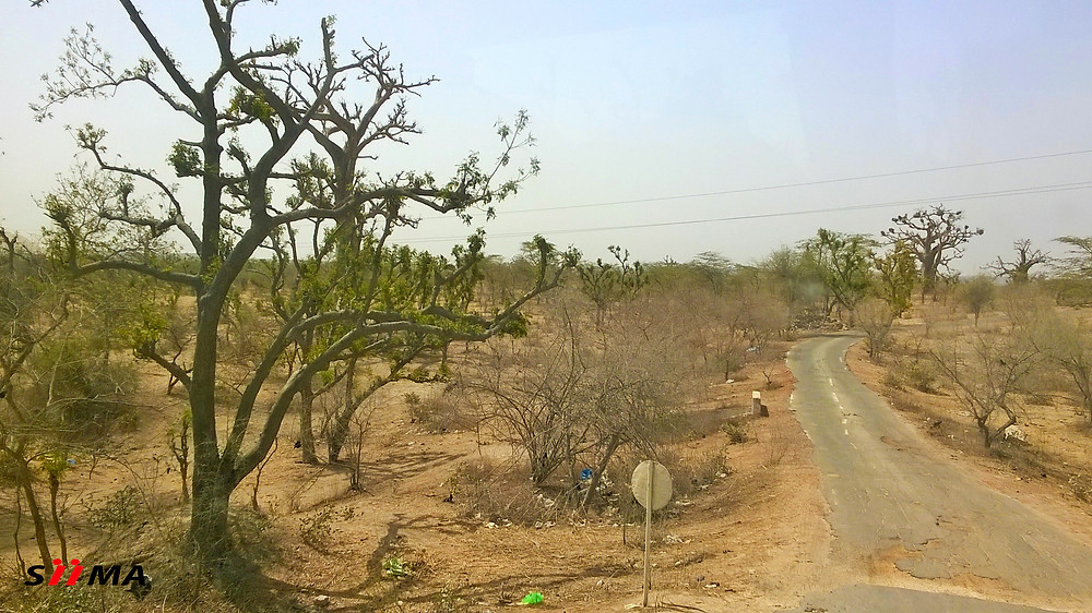 Savana Motorcycle Route