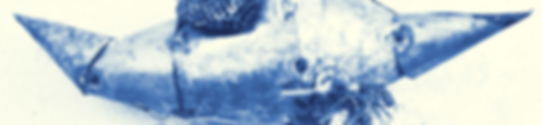 BANNER mostra.png
