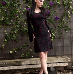 Enchantress Velvet Burnout Dress