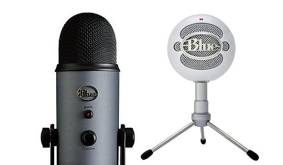 Launched Blue Microphones on Amazon and helped them rise to the #1 USB microphone in the world
