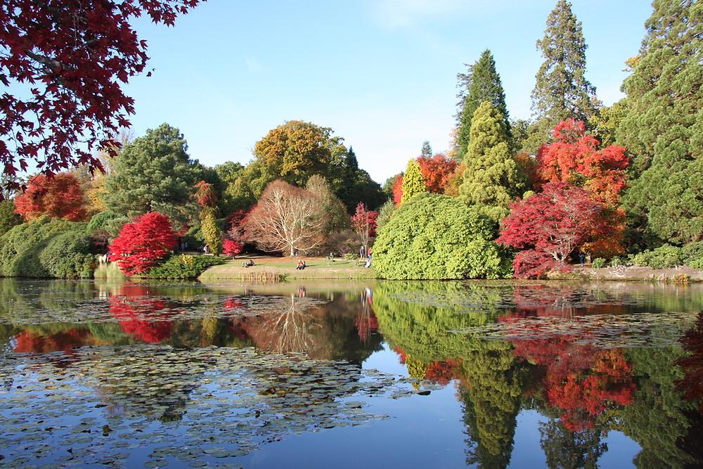 Lakeside Views Sheffield Park near White Lodge b&B