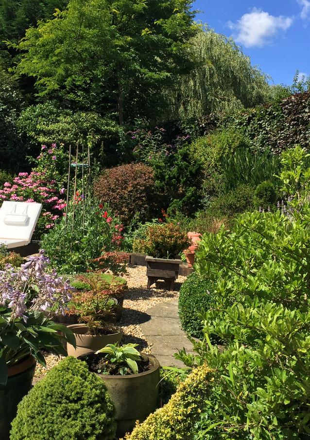 Beechwood B&B Garden