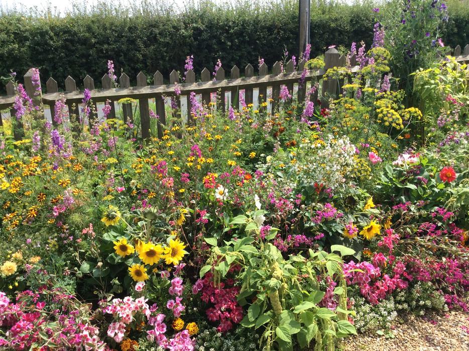 Floral Retreat