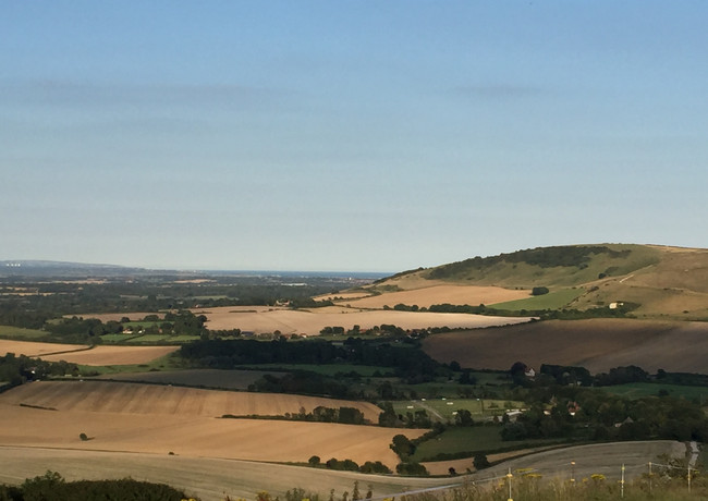 South Downs National Park View