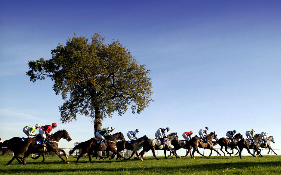 Go Horse Racing for Easter at Plumpton
