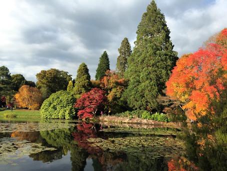National Trust Autumn Magic