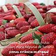 atibaia turismo rural circuito das frutas19022021