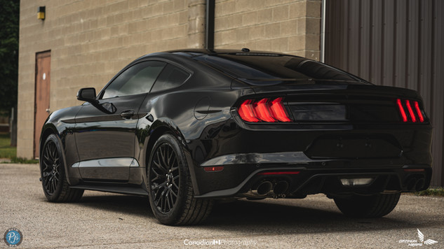 2019 GT 15% rear 35% front