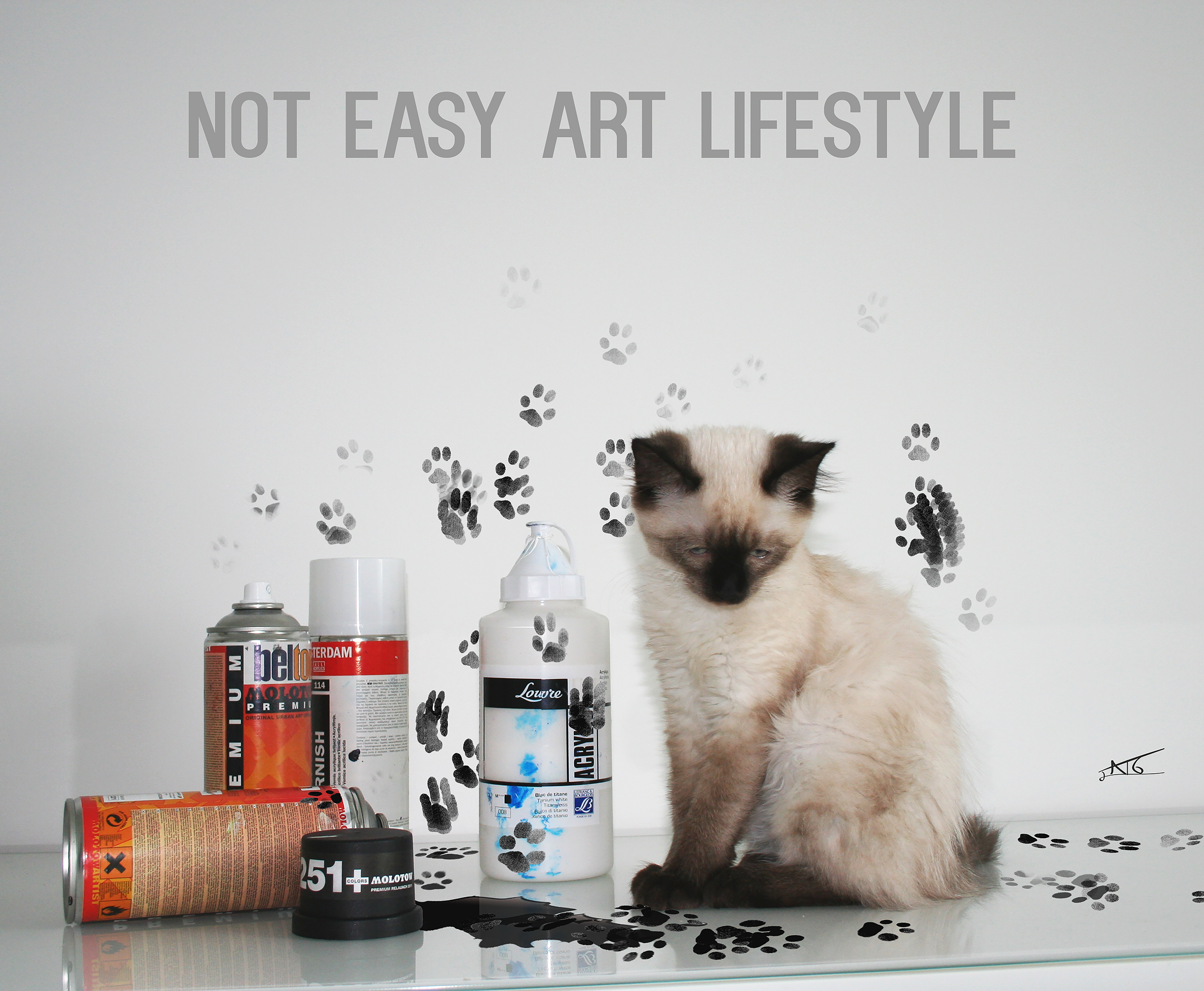 NOT EASY ART LIFESTYLE 100 x 83 cm 2000 €