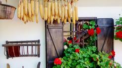 Zdrava hrana na Europskom trgu