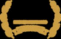 IGA20_Best VR Game_Black Font.png