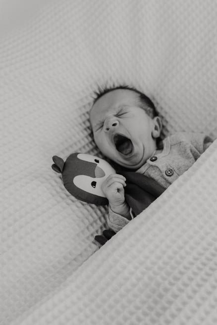 Neugeborenenfotograf heddesheim-11.jpg