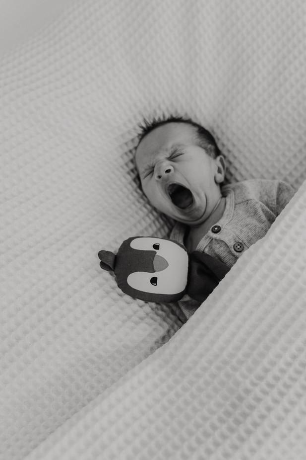 Neugeborenenfotograf heddesheim-12.jpg
