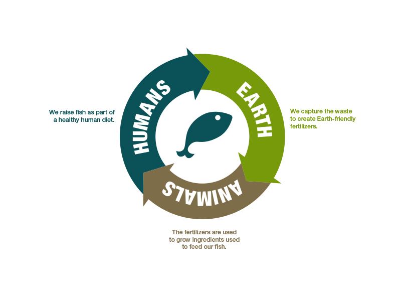 Brand Messaging - Sustainability Cycle