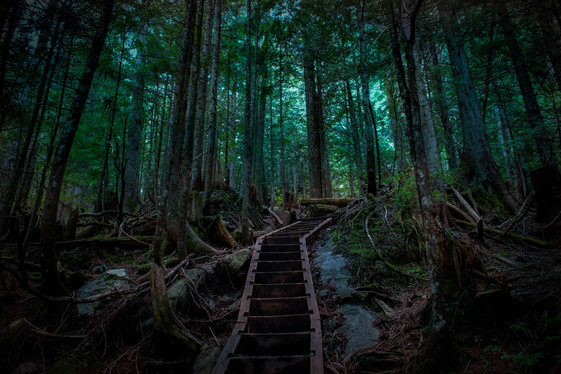 Bridal Veil Falls, Washington, USA