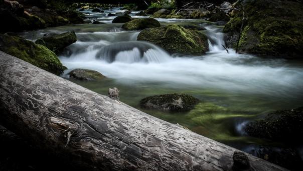 Hood River East Fork
